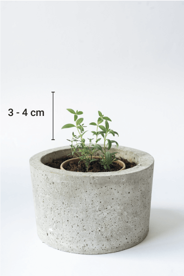 reduse reuse biodegradable packaging ecofriendly