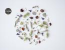 rhoeco - forest - award winning herbal tea blend