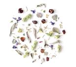 herbal blend mix loose leaf herbs rhoeco