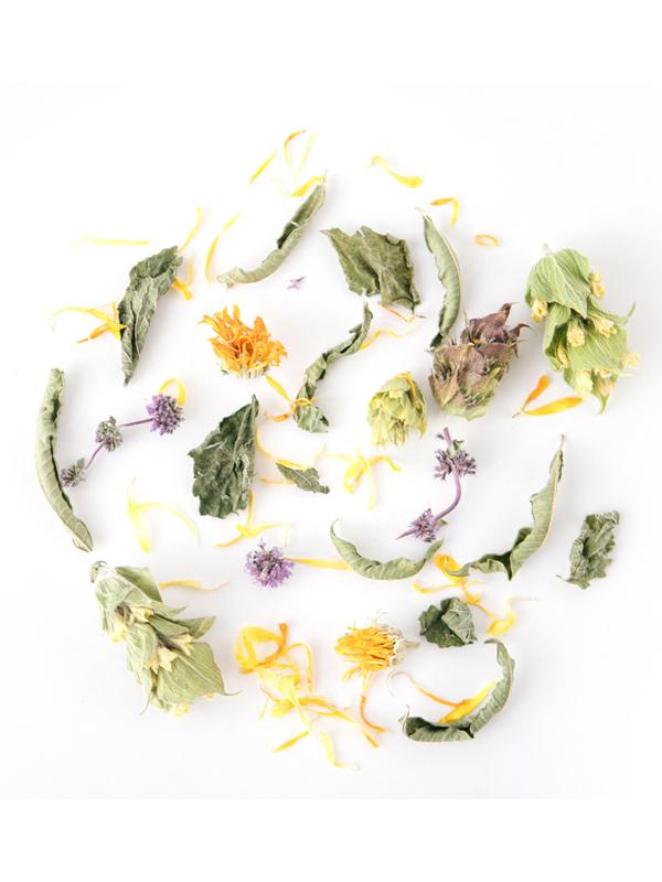 herbal tea whole leaf loose herbs greek rhoeco