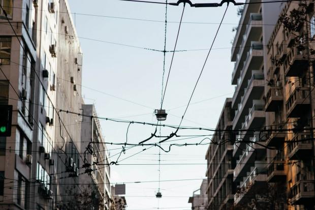 urban ecosystem rhoeco