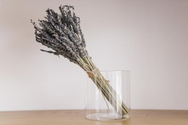 rhoeco fine organic goods lavender