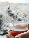 rhoeco organic specialty herbal tea blend